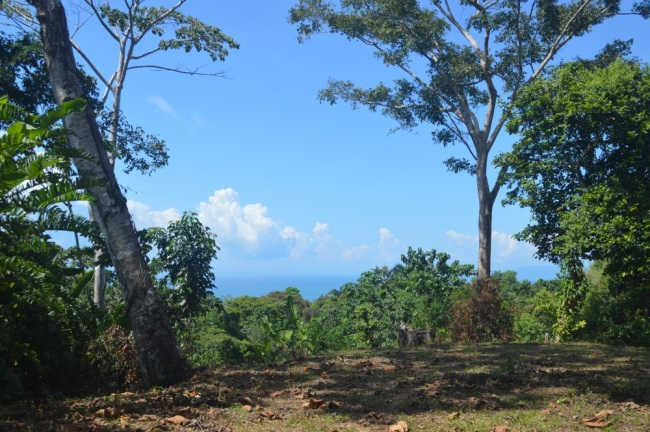 Acres with ocean view near Pavones