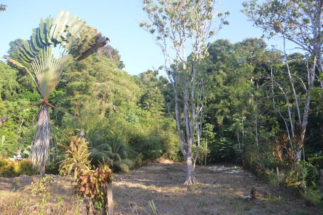 Great neighborhood lot for sale Pavones CR