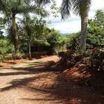 Pavones Farm for sale