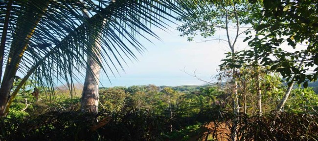 Playa Pilon ocean view for sale