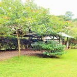 Pavones home For Sale