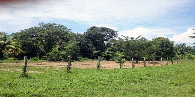 La Hieba Land for sale