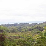 Pavones Land for sale