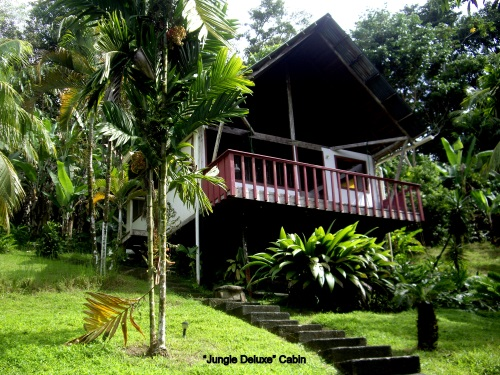 Active business for sale in Pavones Costa Rica