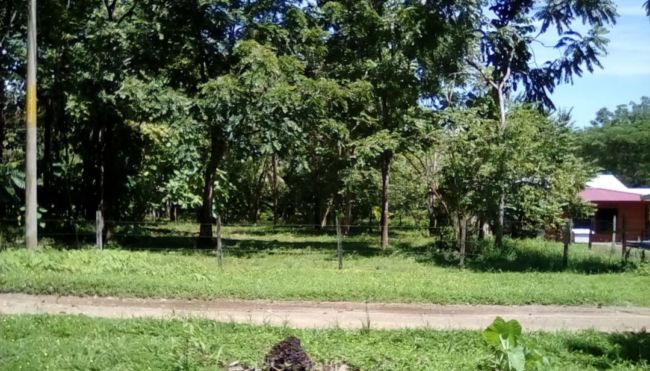 1/4 of an acre walking distance to the beach, near Pavones and Pilon