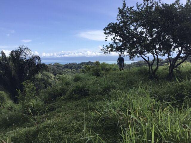 Pavones Alta Mira Ocean View Farm